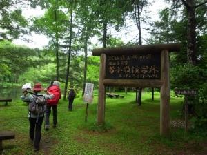 北海道大学演習林