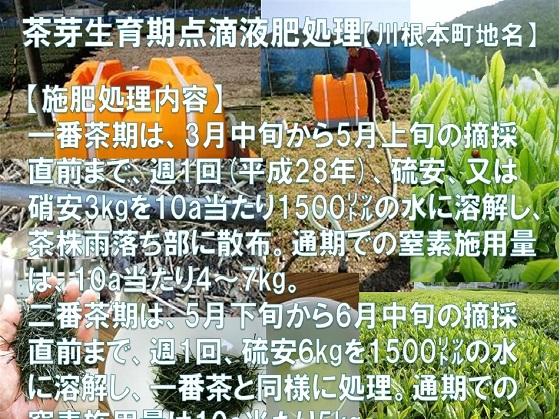 b1_2017080421471570b.jpg