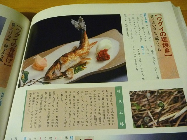 Ugui_04.jpg