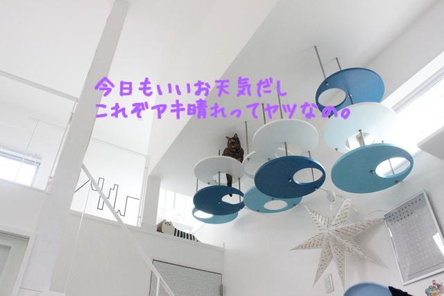 6mQiGluVejf7pNb1505696996_1505697057.jpg