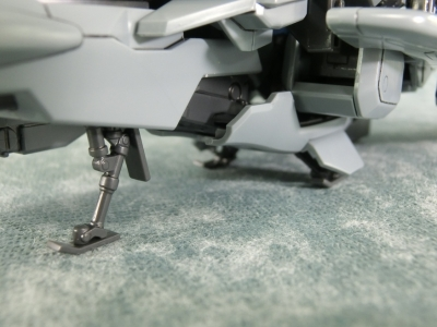 MG-Z-plus-C1-0230.jpg