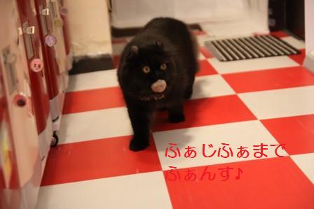 やじろう20170809-02