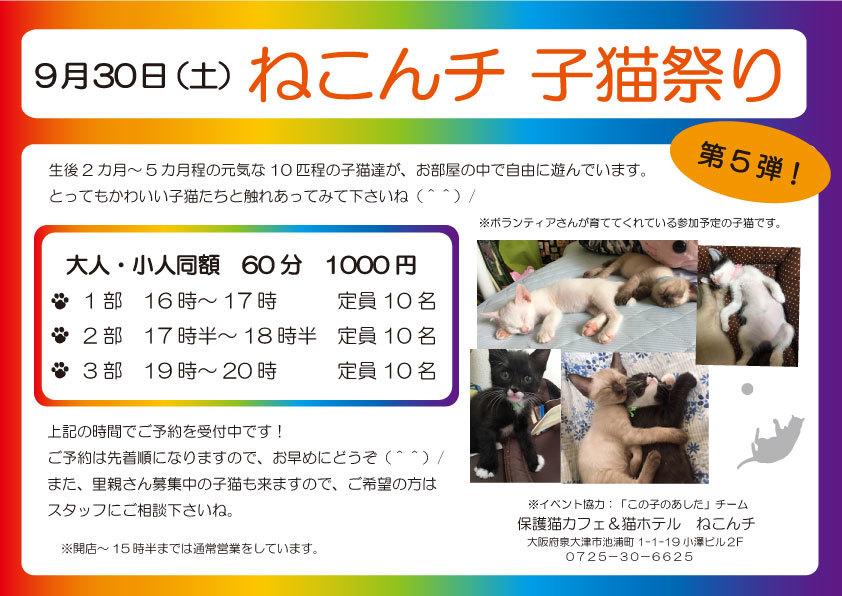 9月30日日 子猫祭り チラシ