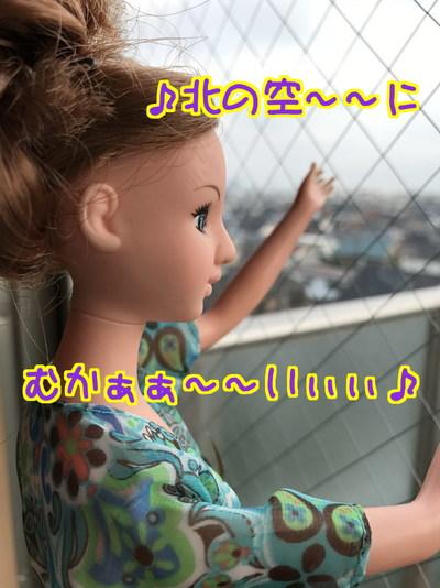 SdV7QC3gqHDMekY1503130450_1503130695.jpg