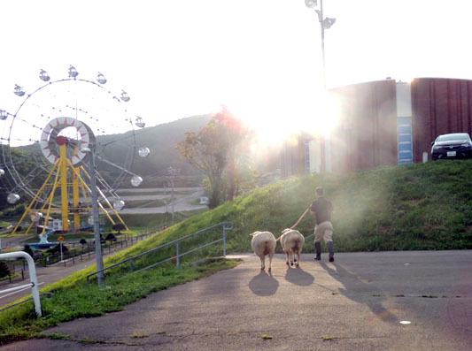 羊終業DSCN9476