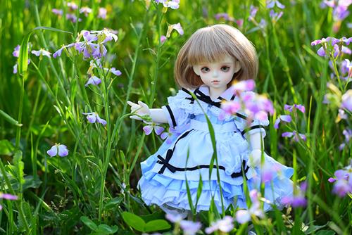 ROSEN LIED、Tuesday's child、通称・火曜子のチェルシー。アリス服に身を包んで、春のお花と一緒に。
