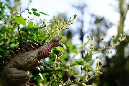 葉っぱに紛れて、姿が見えなくなっていると信じている、シン・ゴジラ第二形態、蒲田くん