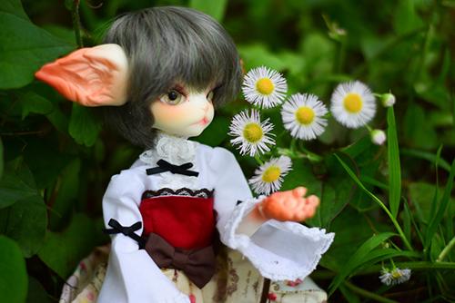 DOLLZONE・Miss Kittyのジーナ。PARABOXの27cmドール用お洋服で、雨が降る直前の野原にお出かけ。