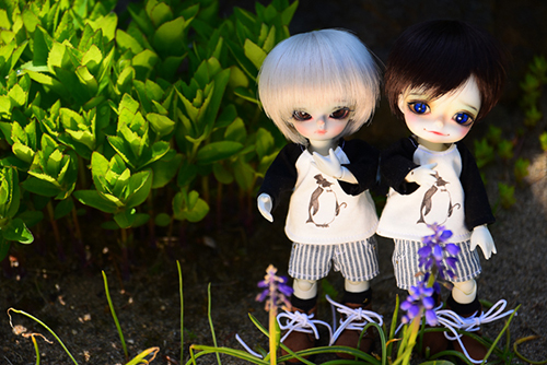 WITHDOLL、Happy Ending Story - Wolf Rudyのルディと、WITHDOLL、Halloween Limited Edition / Black Cat / Butler Pookyのキオ。実家の母がガーデニングに勤しんでいる庭でパヤパヤ。