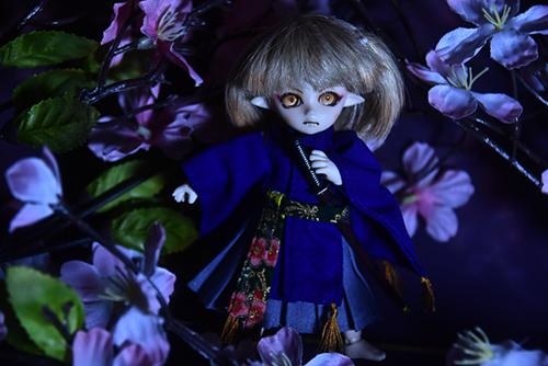 オビツ11ボディ、PARABOXプチフェアリーヘッドをカスタムして作った鬼っ子の朱鷺丸。桜の下で和泉守兼定を振るう。