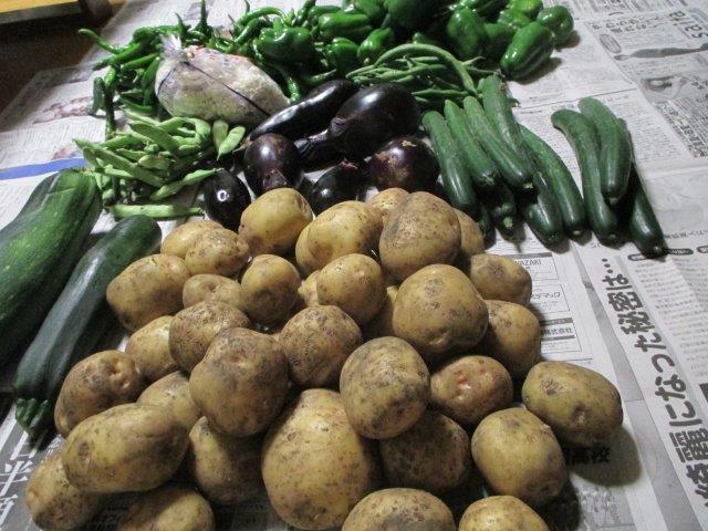 遠野の夏野菜2
