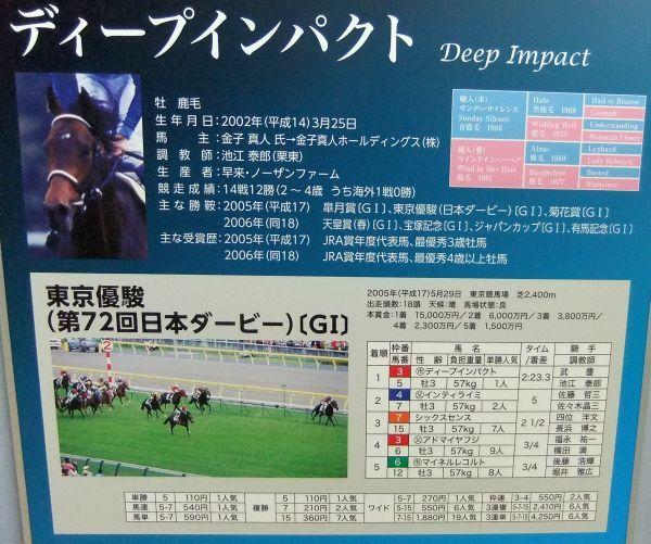 DSCF0226.jpg