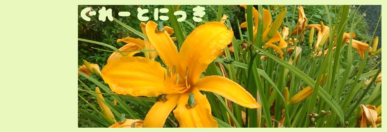 KIMG196表紙4
