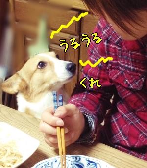 uruurujiro55.jpg