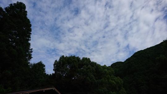20170730_03.jpg