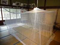 蚊帳を吊りました