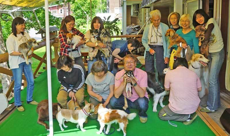 dogs3_201709102244165e1.jpg