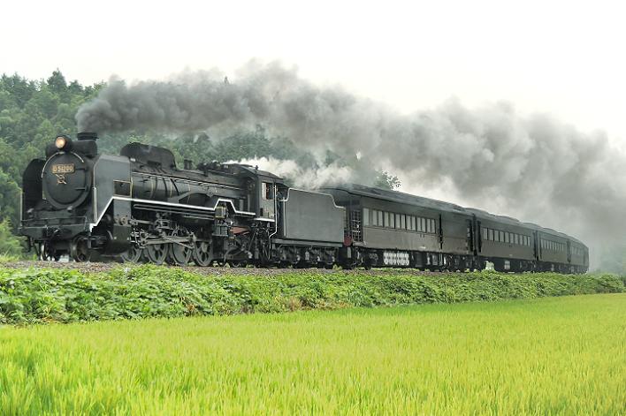 DSC_1933 170726 試9575レ 徳佐~船平山