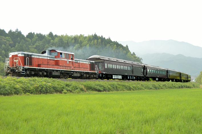 DSC_1774-3 170626 試9575レ 徳佐~船平山