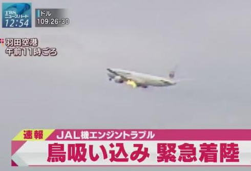 バードストライク 羽田空港 緊急着陸 ボーイング777