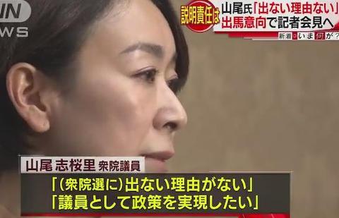 山尾志桜里 民進党 離党 愛知 選挙 無所属 ガソリーヌ