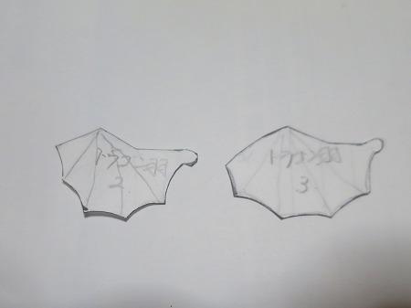 20170824 羽1