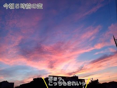 20170825_01.jpg