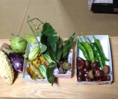 プレゼントの野菜