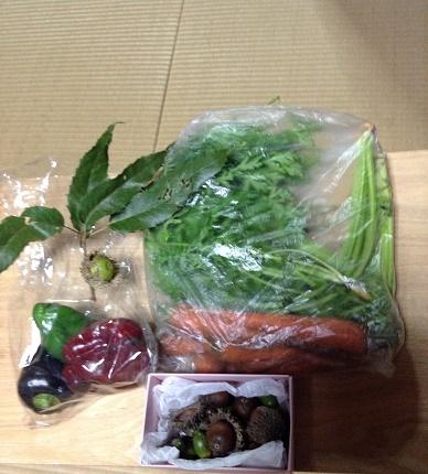 野菜とどんぐり