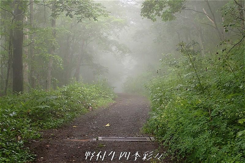 s-TG3-20170804-091931-0.jpg