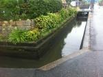 170907 (154)岡山県の用水路 - コピー