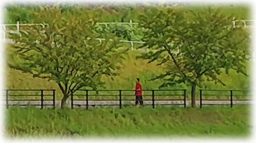 20170911陽だまりの丘公園