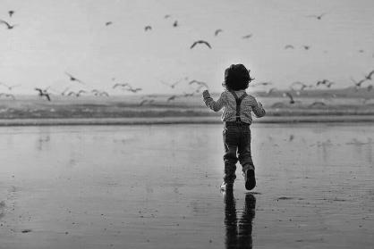子供 空 鳥