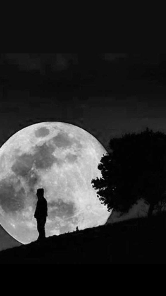 月 寂寞 哀愁
