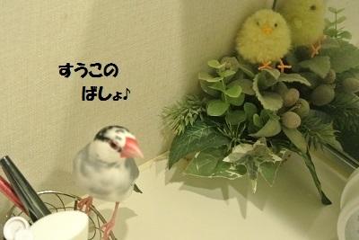 DSC_7617済