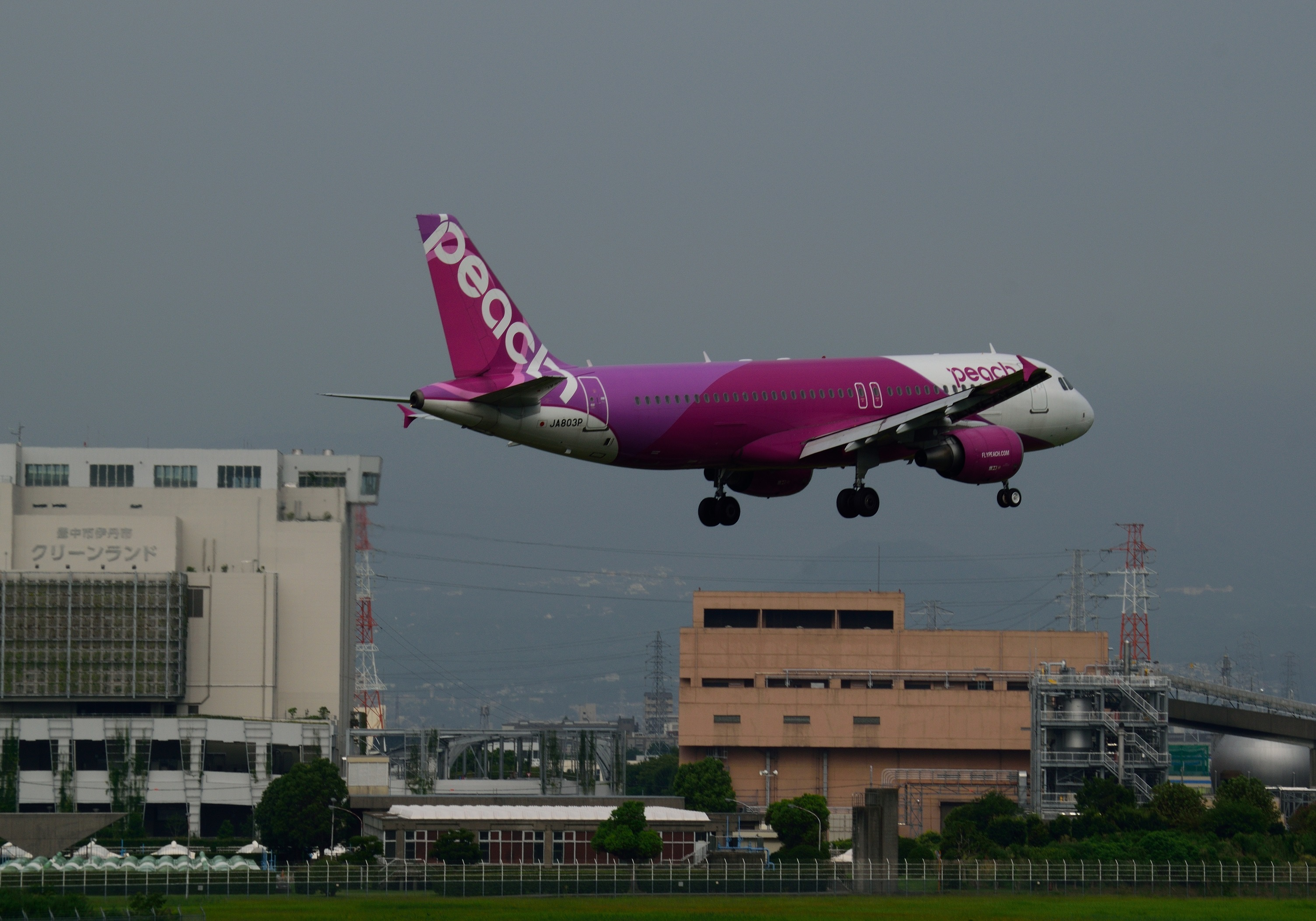 01_JA803P_A320(20170801).jpg