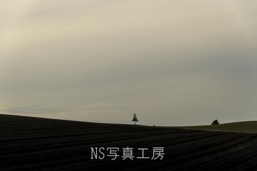 _DSC1089.jpg