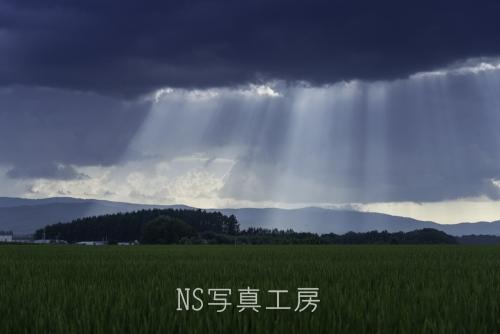 _DSY3161.jpg