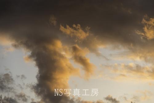 _DSY3273.jpg