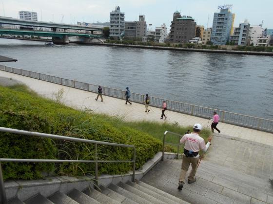 隅田川右岸に降りる