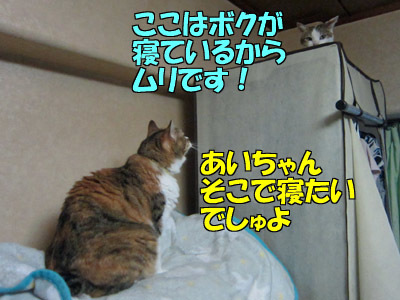170901-01.jpg