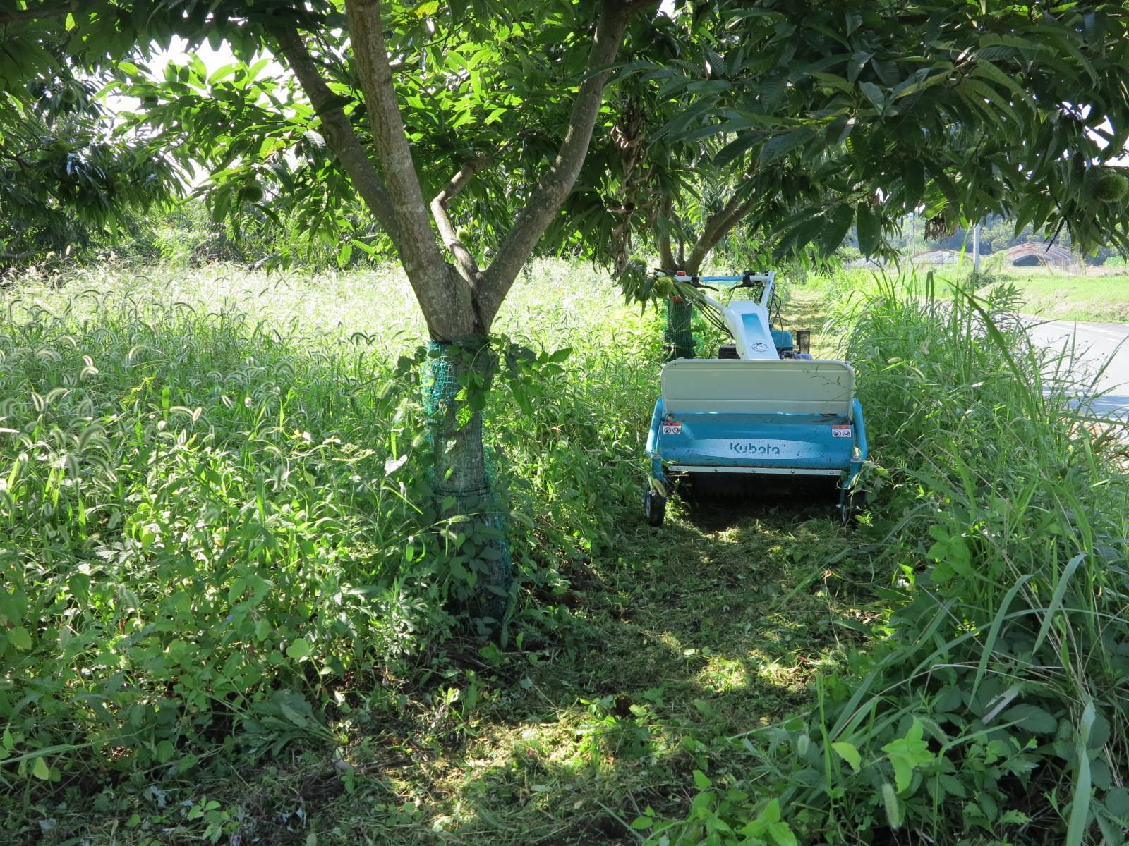 201708上の畑草刈り機
