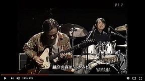 夏なんです細野晴臣&鈴木茂&松本隆