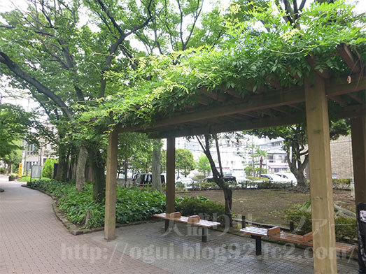 小松川境川親水公園でお弁当タイム045