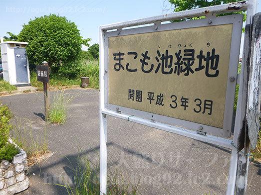 山田うどん近くのまこも池緑地075