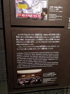 170807核兵器禁止条約