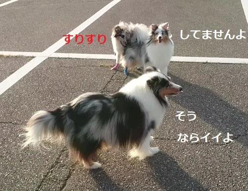 MOV_3152_000007.jpg
