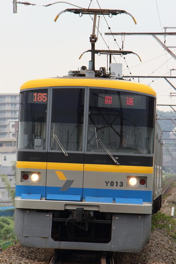 IMG_8521.jpg