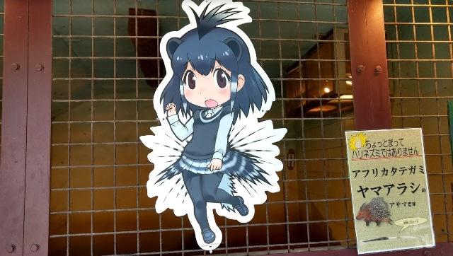 misaki011