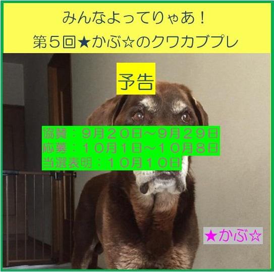 http://blog-imgs-114.fc2.com/o/o/k/ookuwalab/kakusan_2017.jpg